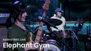 Elephant Gym on Audiotree Live Full Session