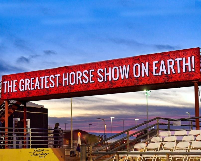 scottsdale arabian horse show 2020