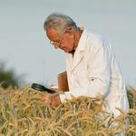 Агроном — стихи о профессиях