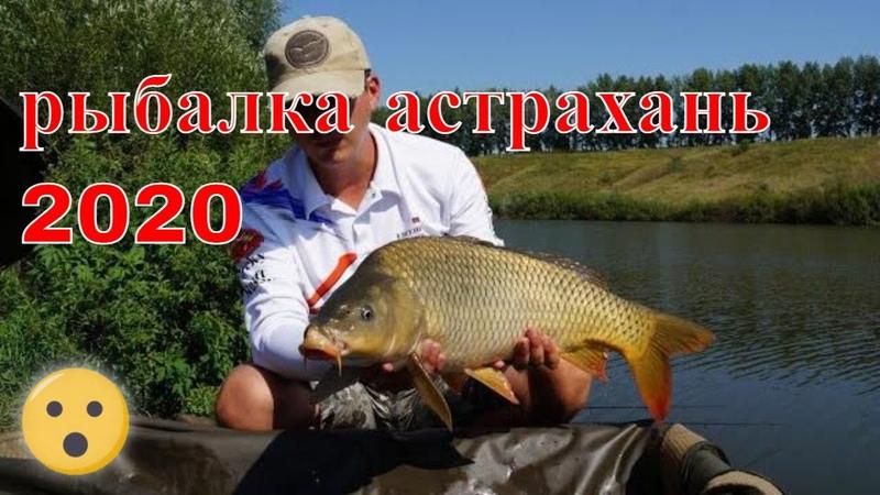 САЗАН РАКИ жор карандашей Раздолбай на рыбалке Ловля сазана в Астрахани 2020