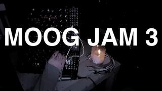 Richard Patrick MOOG JAM 3