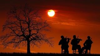 Самая Красивая Мелодия на Свете Музыка всей Жизни