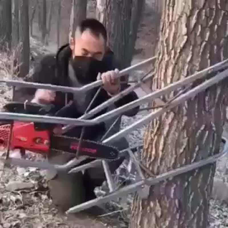 ЯЖЕХОЗЯИН l Необычное устройство для лазания по деревьям