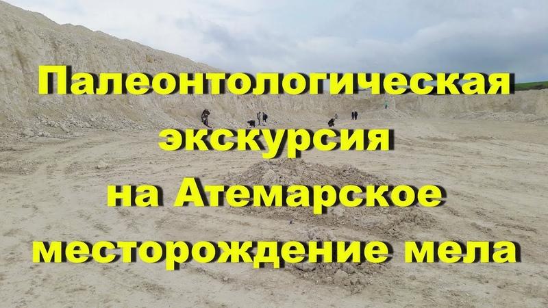 Палеонтологическая экскурсия на Атемарское месторождение мела