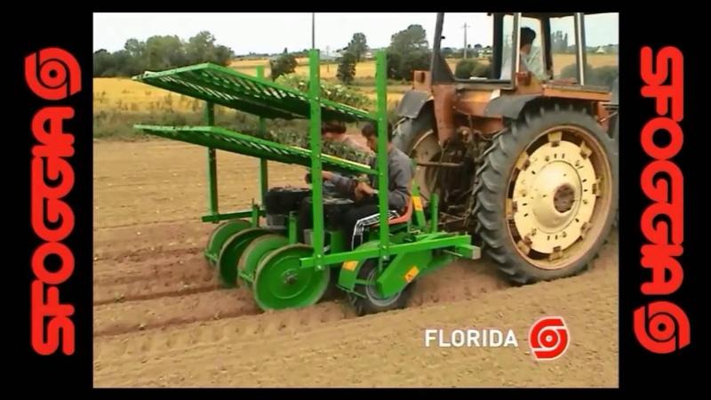 FLORIDA полуавтоматическая рассадопосадочная машина заменит работу 6 человек