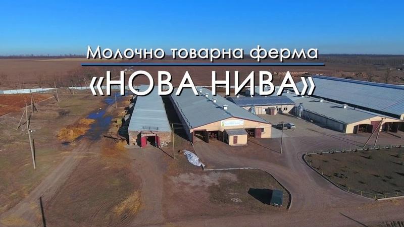 Віртуальний тур Молочно товарна ферма Нова Нива